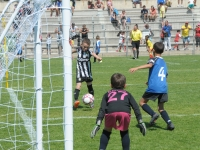 sport-sante-323-1