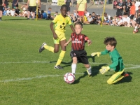 sport-sante-323-27