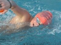 natation-27